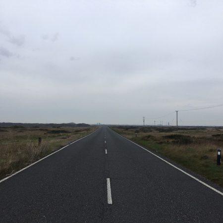 Roaddungeness